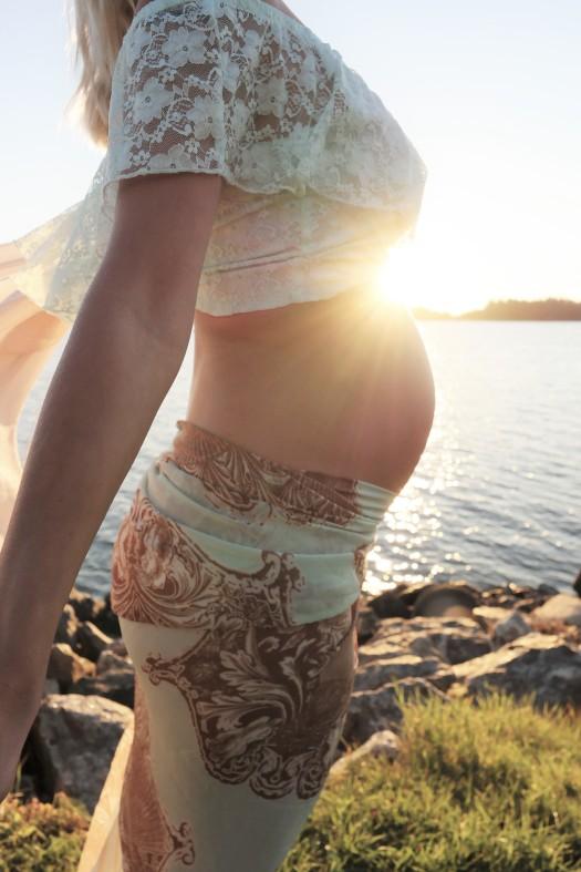 Fotografering-Vasa